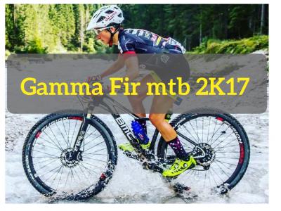 Ruote MTB: la gamma FIR 2017